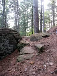 Typical terrain - Cliffhanger Trail at Levis