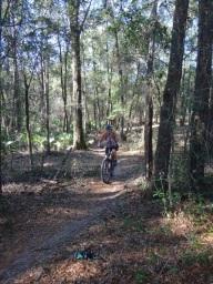 Through the woods at Santos