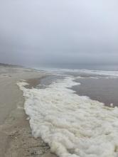The beach at Anastasia SP